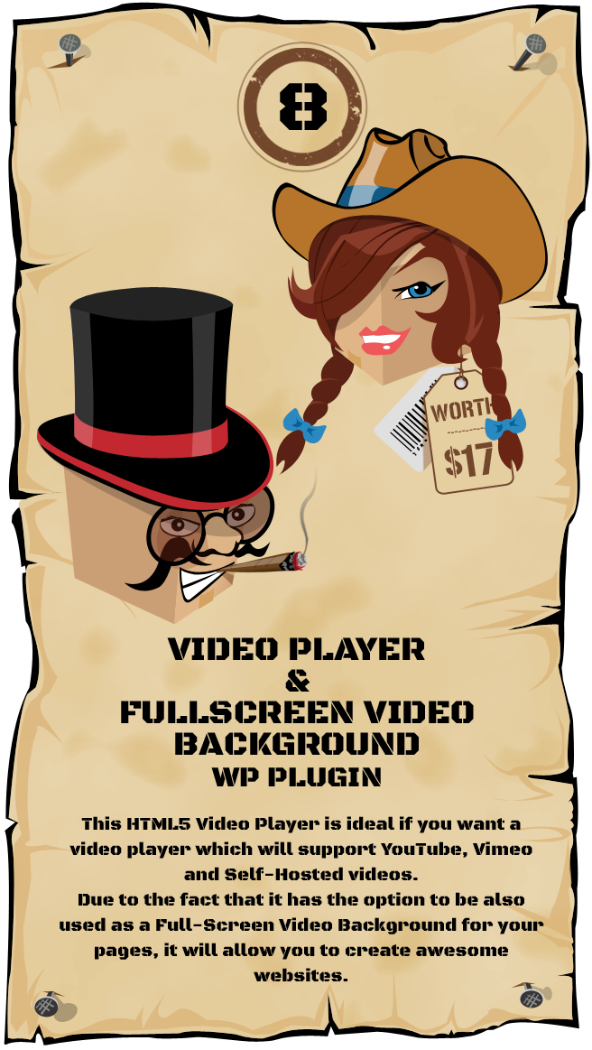 WordPress Video Player & FullScreen Video Background