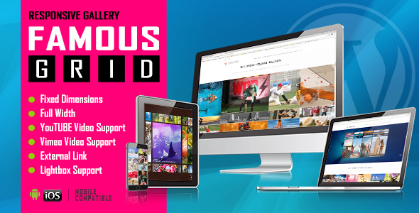 Famous Grid - Responsive Image Video Galleries WP Plugin
